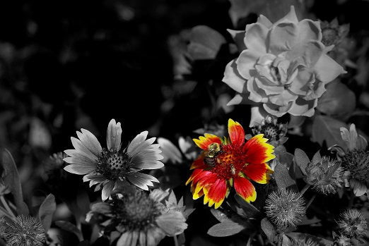 Photography by John Spoltore