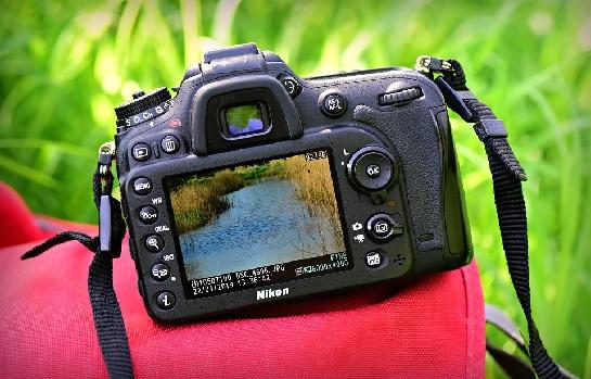 Outdoor Photo Safari Shoots