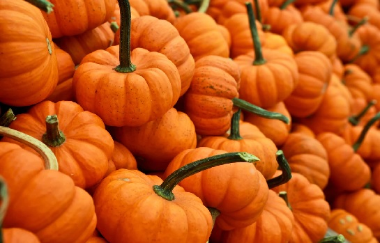 Tots Night Out: Halloween Pumpkins, Ages 18-months to Pre-K w/parent or caregiver