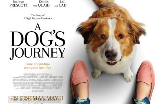 Movie: A Dog's Journey