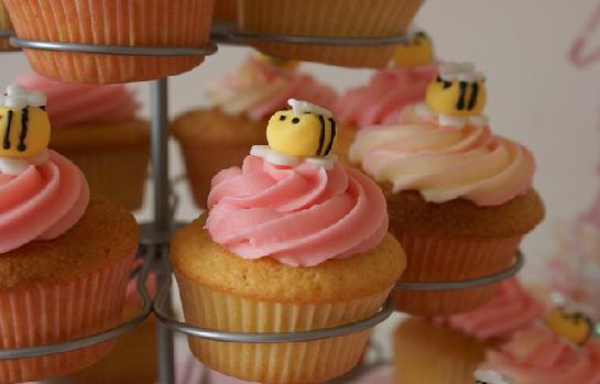 Bee Mine Cupcakes (YA)