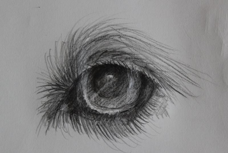 Sketch - eye - by Marlene Bezich