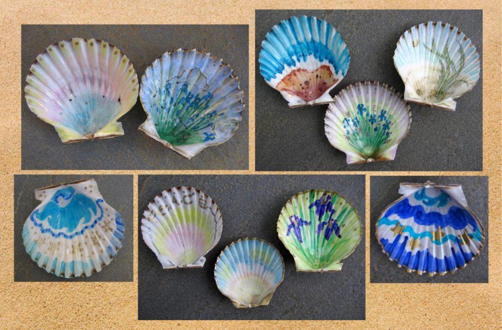 Shell Collection - Marylee Kuczewski