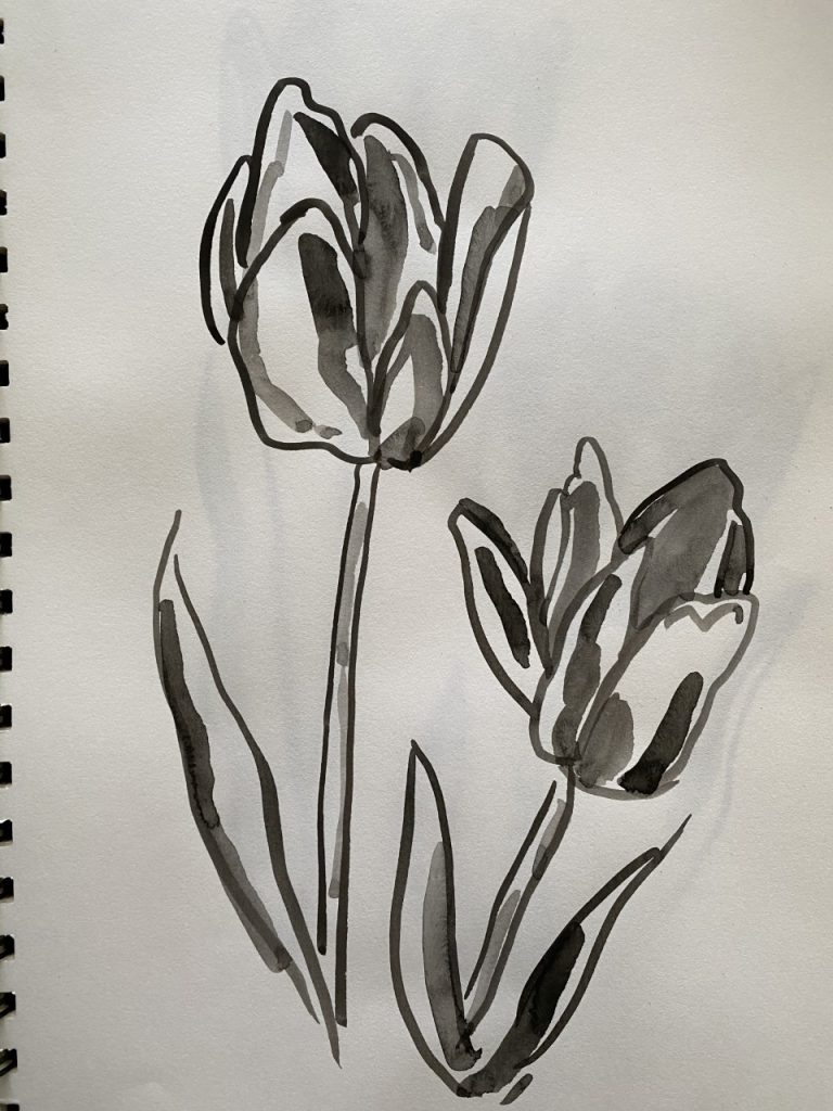 Line Drawing With Shading - Tulips - Patti Gural