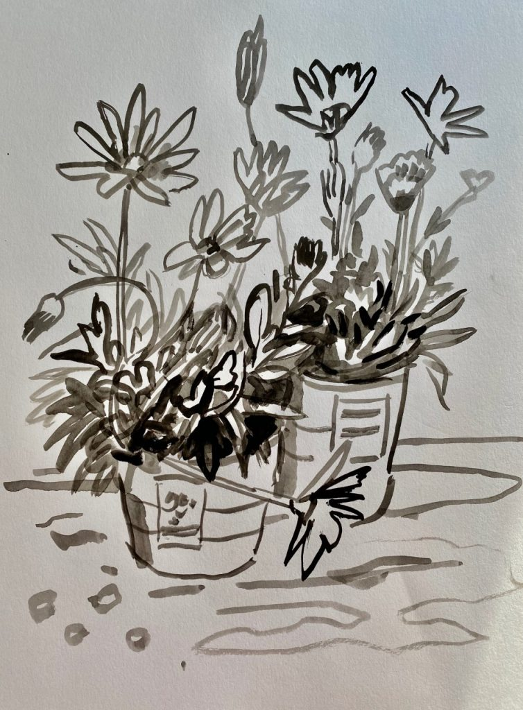 Line and Shadow Wash Planted Pots - Patti Gural