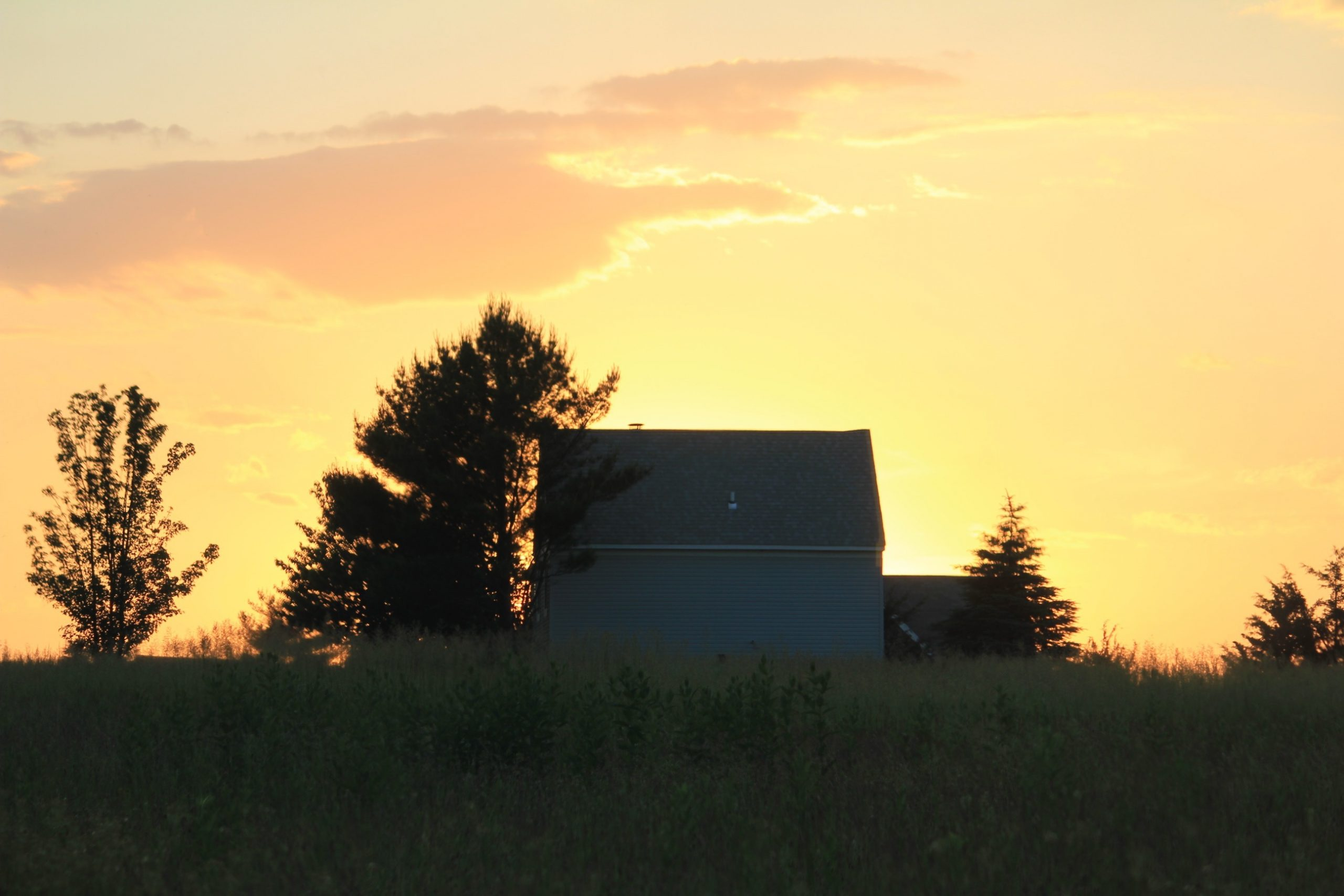 Sunset Farm - Lorena Doherty