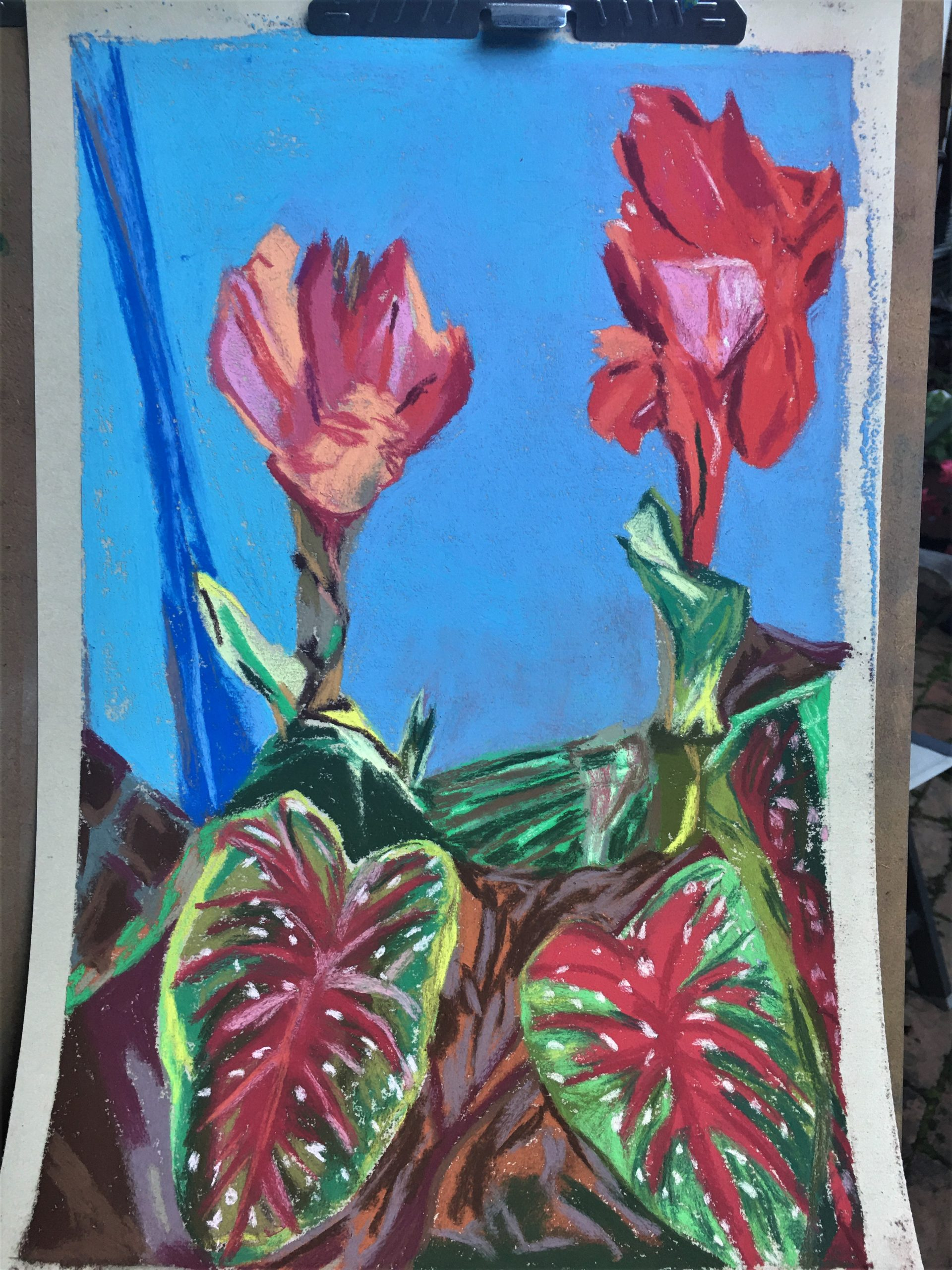 Art By Lorena Doherty, 2 canna red
