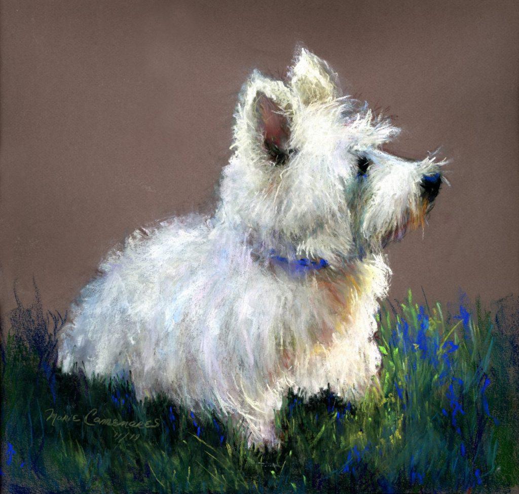 Dog by Maire Camenares